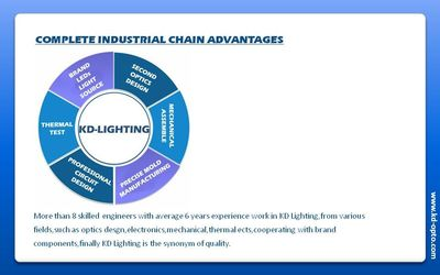 COMPLETE INDUSTRIAL CHAIN ADVANTAGES